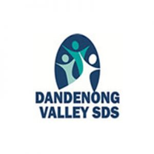 DVS School